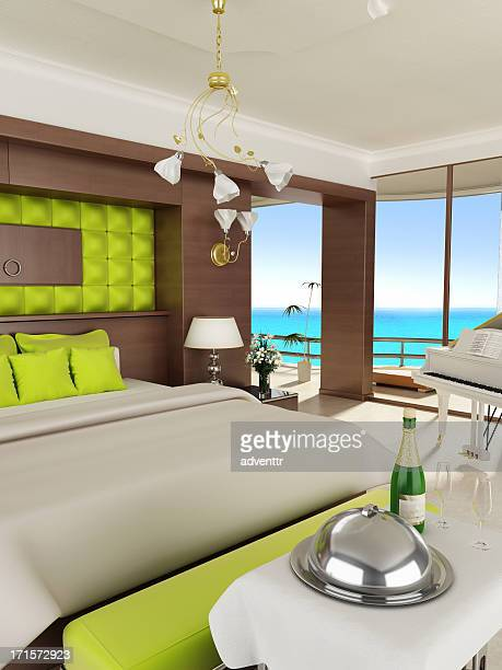 Luxurious hotel room and/or honeymoon suite