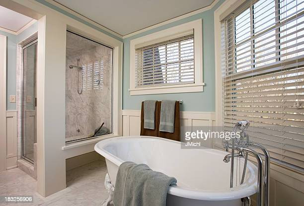 Luxury Bathroom Remodel Showing Bathtub and Shower.