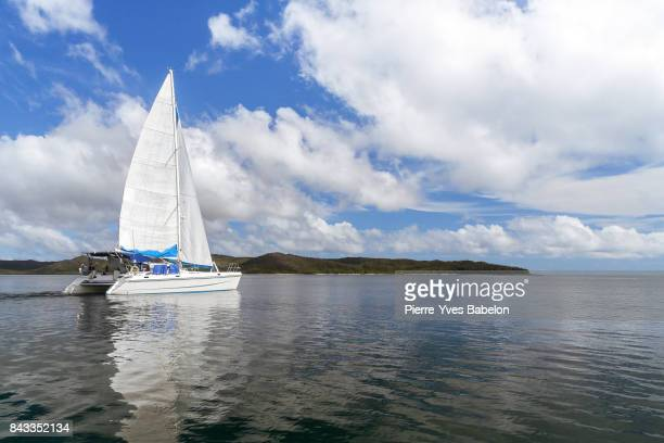luxury catamaran in the bay - catamaran stock photos and pictures