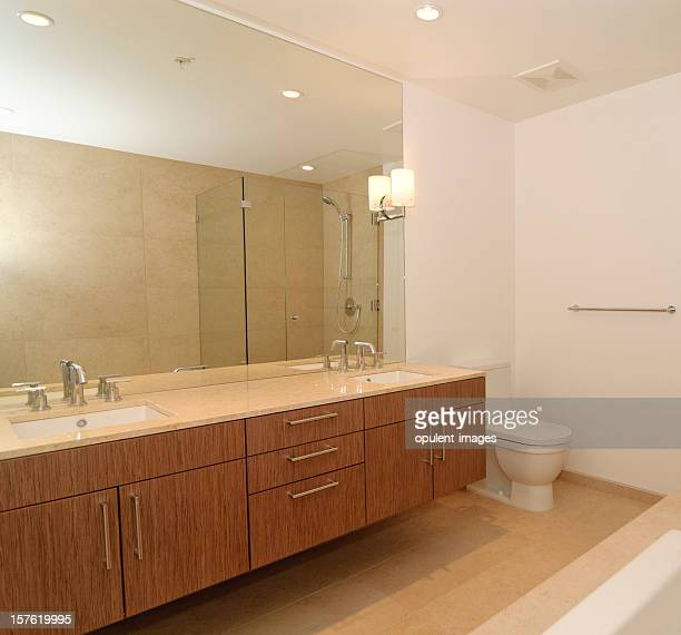 Luxury Designer Bathroom