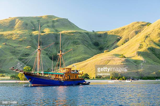 luxury dive yacht anchored in komodo national park in indonesia - komodo fotografías e imágenes de stock