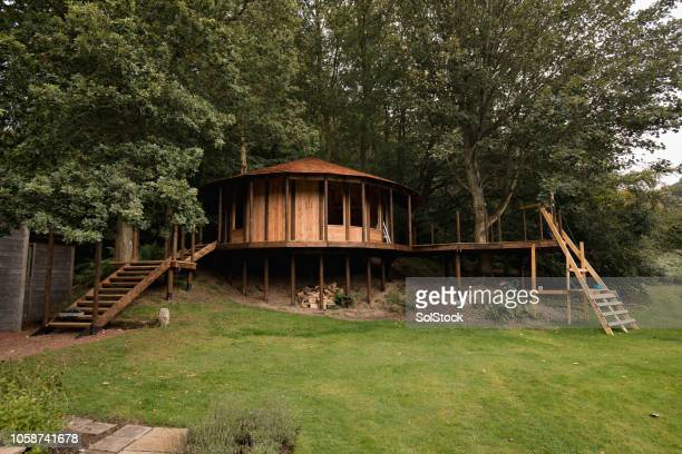 luxury garden treehouse - tree house stock pictures, royalty-free photos & images