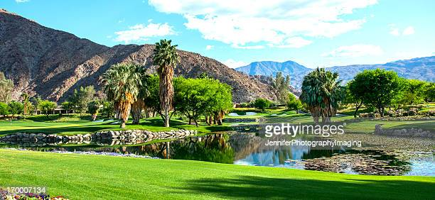 luxury golf course - palm springs california stock pictures, royalty-free photos & images