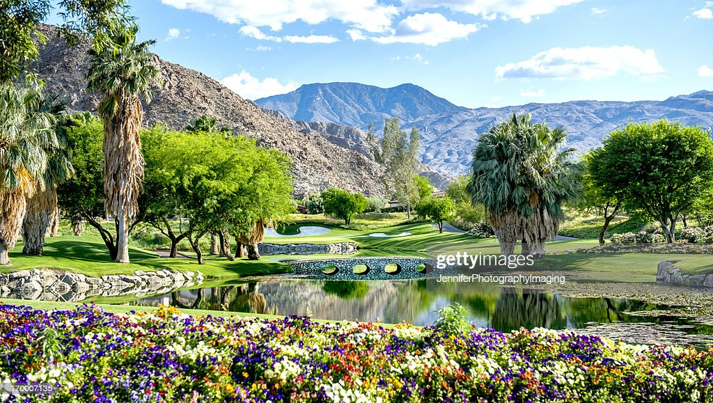 A luxury golf course with flowers and a bridge : Stock Photo