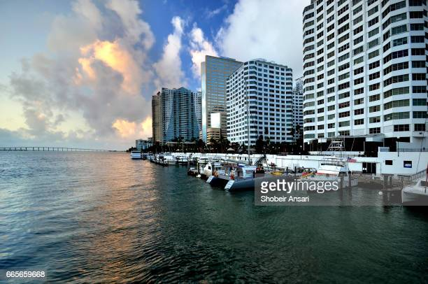 Luxury High-Rise Penthouse in Miami - Brickell