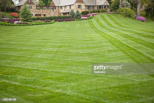 luxury home or house with large front yard - landscaped stock pictures, royalty-free photos & images