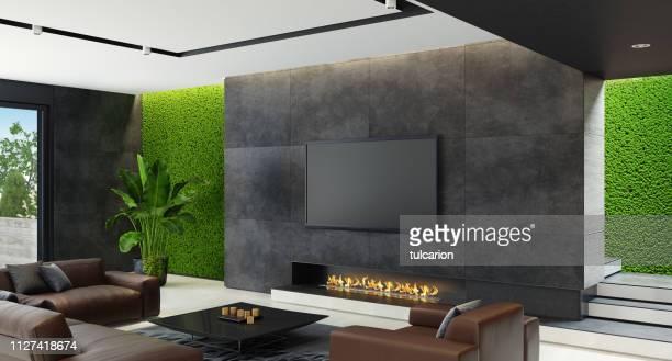 エコ暖炉のある革新的な緑の苔の壁と豪華なリビング ルーム - insight tv ストックフォトと画像