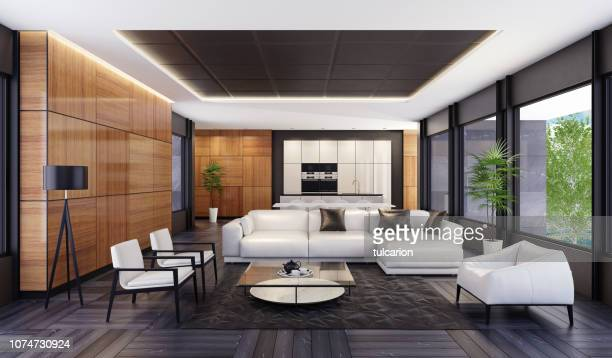 luxury minimalist open space living room with kitchen and dining - penthouse stock pictures, royalty-free photos & images