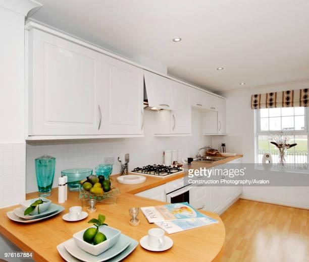 Luxury modern kitchen in new build house