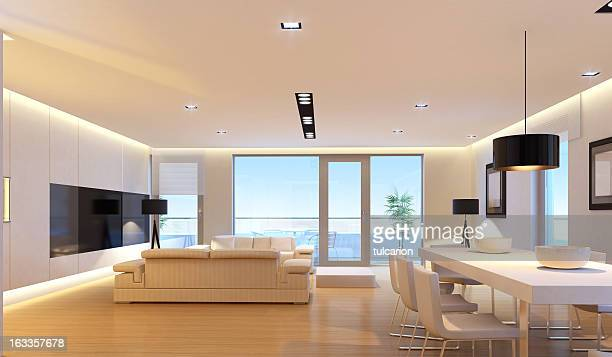 Luxury Penthouse Interior