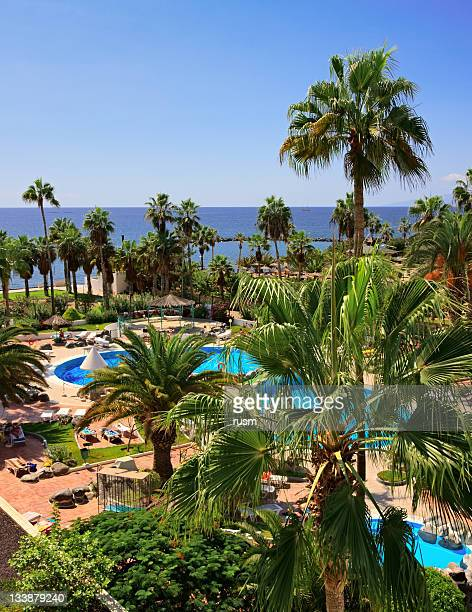 luxury poolside, canary islands - tenerife stockfoto's en -beelden