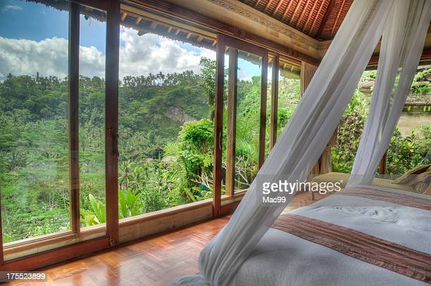 luxury villa with jungle view - mosquito net stock photos and pictures
