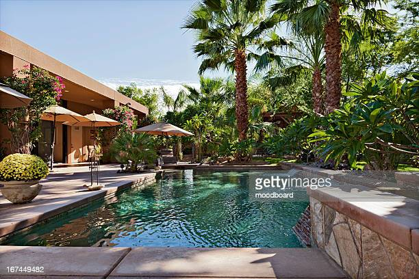 luxury villa with waterfall feature and palm trees - stagno acqua stagnante foto e immagini stock