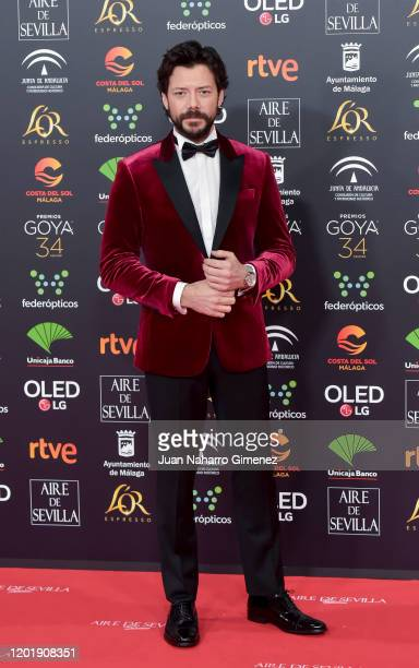 Álvaro Morte attends the Goya Cinema Awards 2020 during the 34th edition of the Goya Cinema Awards at Jose Maria Martin Carpena Sports palace on...
