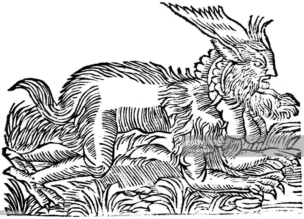 Lycanthropy: forest demon captured in Germany in 1531 (1669). : Fotografia de notícias