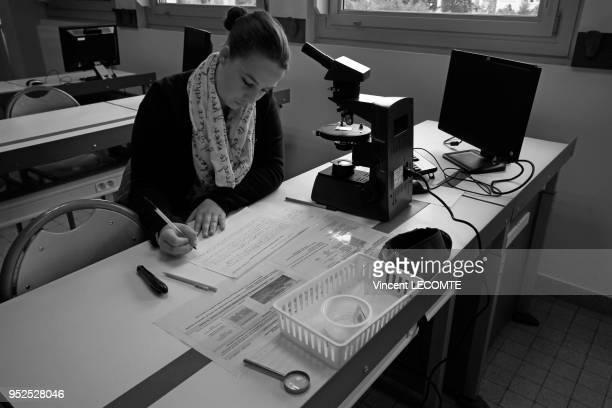 Lycéenne élève de Terminale écrivant sur sa copie lors dune épreuve du baccalauréat dans un lycée public en Picardie dans le nord de la France le 4...
