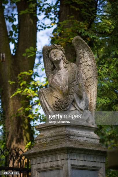lychakiv cemetery - ukrainian angel stockfoto's en -beelden