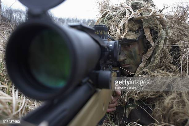 Lying in undergrowth a camouflaged British infantry soldier is seen looking down the telescopic sight of the new Britishmade Long Range L115A3 sniper...