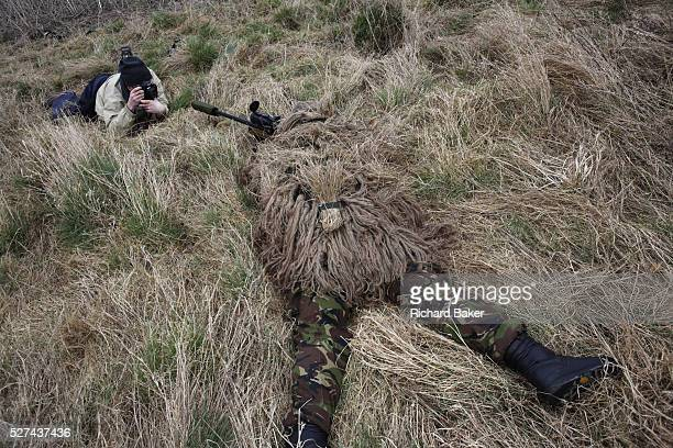 Lying in undergrowth with a photographer shooting pictures a camouflaged British infantry soldier is seen looking down the telescopic sight of the...