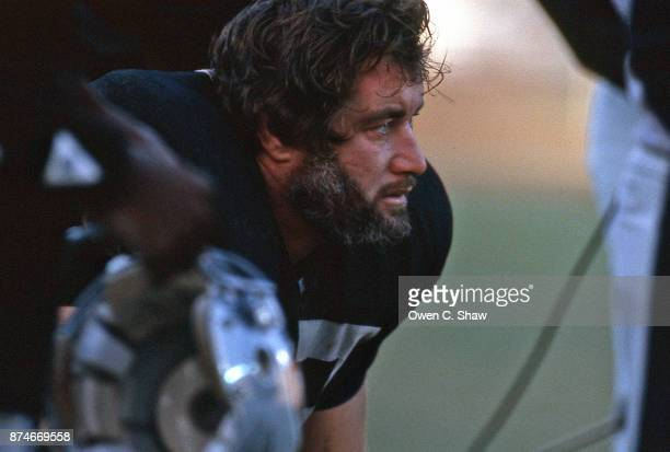 Lyle Alzado of the Los Angeles Raiders at the Coliseum circa 1984 in Los AngelesCalifornia