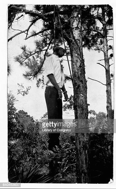 A lynched African American man hangs from a noose in a tree