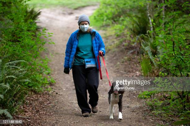 Lynette FisherCharles and her dog Gracie a twoyearold springer spaniel go for a hike in Saint Edward State Park on May 5 2020 in Kenmore Washington...