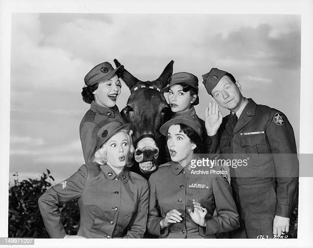 Lynn Bari Mamie Van Doren Julie Adams Mara Corday and Donald O'Connor with talking mule pal in publicity portrait for the film 'Francis Joins The...