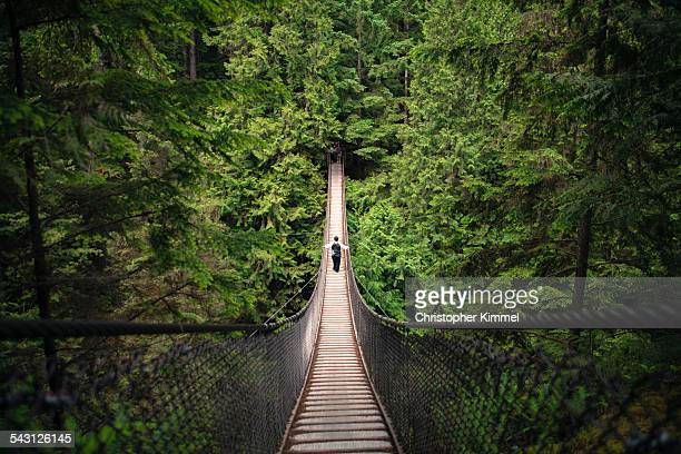 lynn canyon suspension bridge - suspension bridge stock photos and pictures
