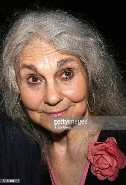 Lynn Cohen during Opening Night Afterparty for Macbeth at The Belvedere Castle in Central Park at The Belvedere Castle in Central Park in New York...