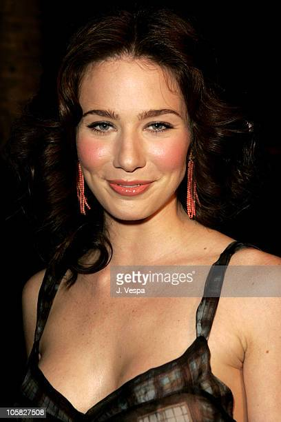 Lynn Collins during 2004 AFI Film Festival 'The Merchant of Venice' Red Carpet at Cinerama Dome in Los Angeles California United States