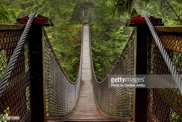 lynn creek suspension bridge - vancouver canada stock pictures, royalty-free photos & images