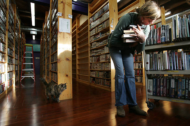 lynn hope of los angeles browses bookshelves as zola the cat patrols her territory at the - Bookshelves Los Angeles