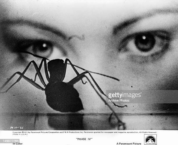 Lynne Frederick becomes mystified by the strange hypnotic power of a superintelligent ant in a scene from the film 'Phase IV' 1974