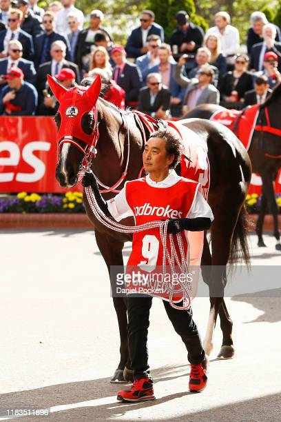 Lys Gracieux is seen in the mounting yard ahead of race 9 the Ladbrokes Cox Plate during Cox Plate Day at Mooney Valley Racecourse on October 26,...