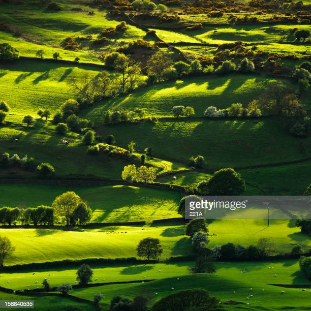 lyth valley in the english lake district - lake district stockfoto's en -beelden