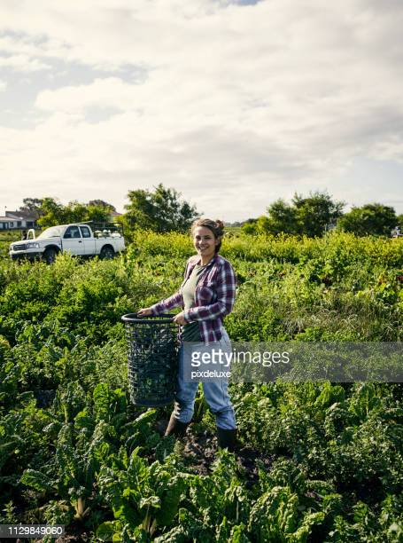 i'm a fan of organic farming - agricultural occupation stock pictures, royalty-free photos & images