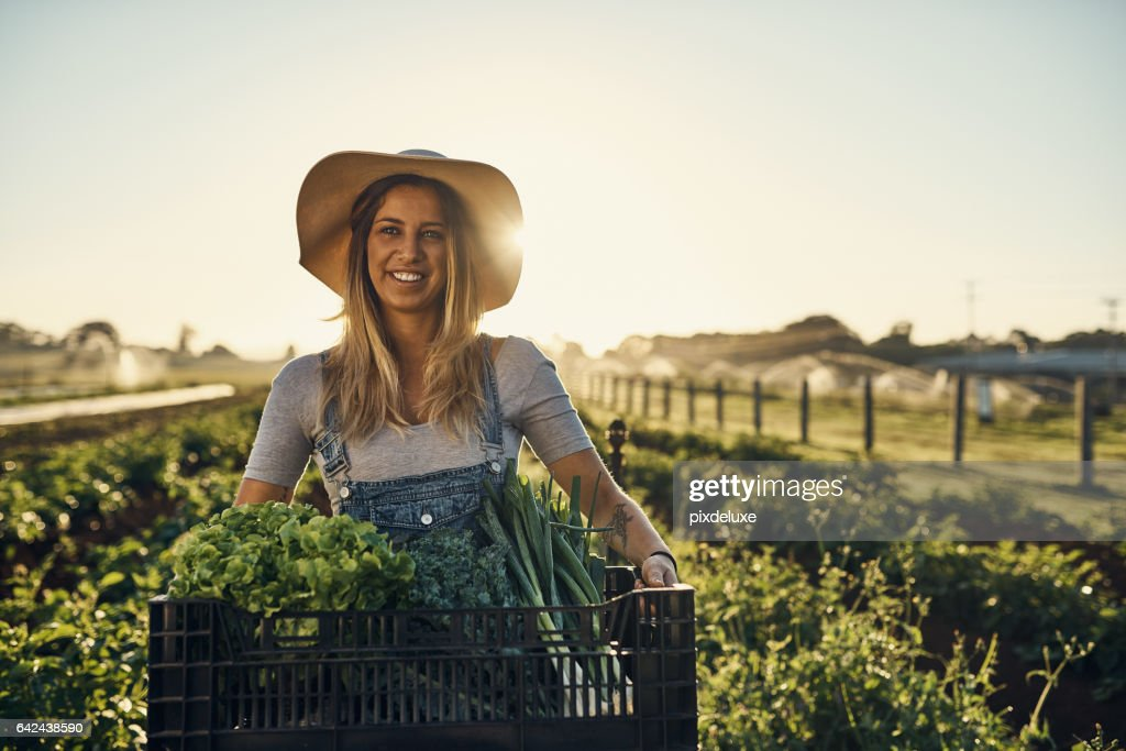 I'm not afraid to get my hands dirty : Stock Photo