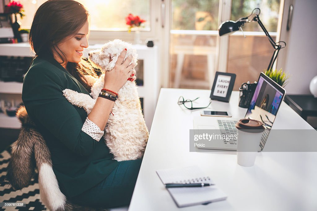 I'm taking my dog with me everywhere! : Stock Photo