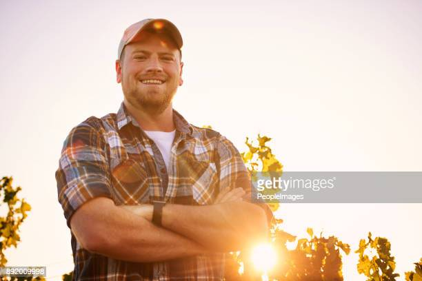 i'm the master of this vineyard - farm worker stock pictures, royalty-free photos & images