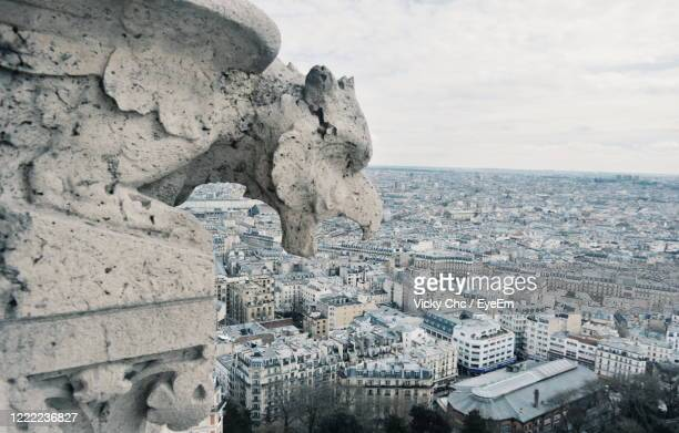 i'm watching you - paris rocks stock pictures, royalty-free photos & images