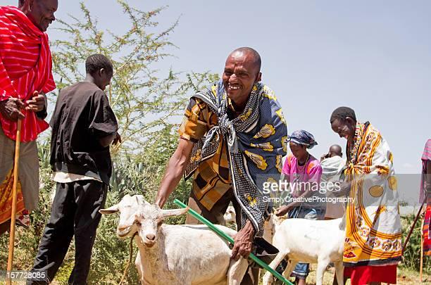 Maasai Goat Distribution in Africa