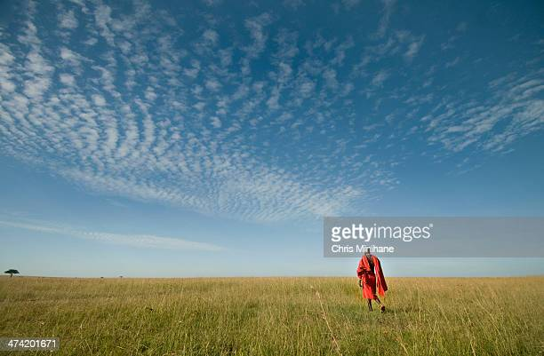 Maasai in the Grass