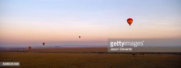A group of hot air balloons floating over the vast short grass plains of the African savannah.