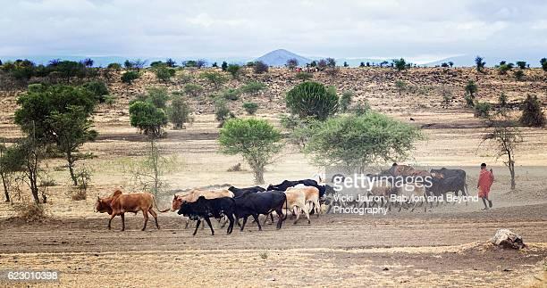 Maasai Street Scene in Tanzania