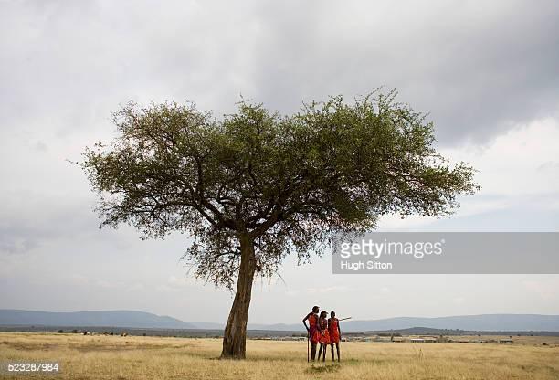 maasai tribesmen - hugh sitton stock pictures, royalty-free photos & images