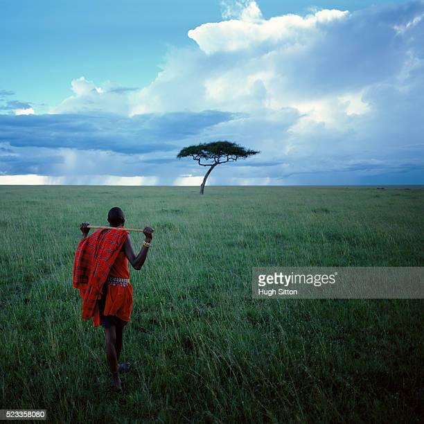 maasai tribesmen - hugh sitton stock-fotos und bilder