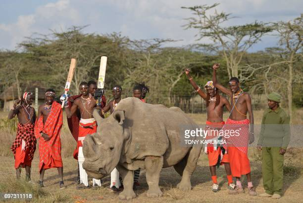 TOPSHOT Maasai warriors pose with Sudan the only male of the last three northern white rhino subspecies on the planet on June 18 2017 following a...