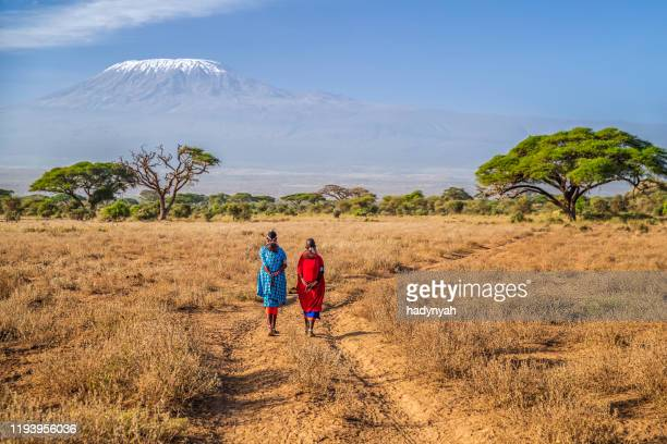 maasai women crossing savannah, mount kilimanjaro  on the background, kenya, africa - indigenous culture stock pictures, royalty-free photos & images