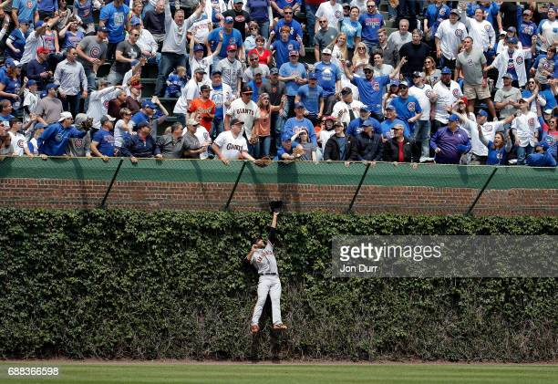 Mac Williamson of the San Francisco Giants leaps in to the ivy to in an attempt to make a catch as fans reach for the home run ball of Kris Bryant of...