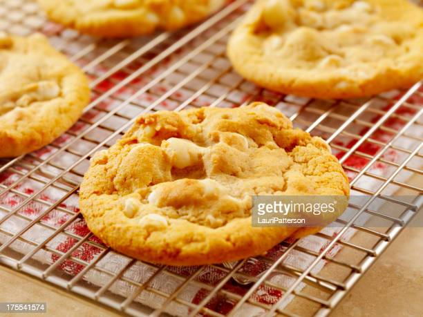 macadamia nut and white chocolate cookies - white chocolate stock photos and pictures